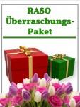 Überraschungs-Paket